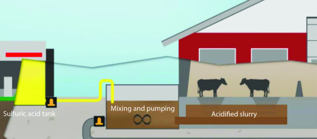 Slurry acidification